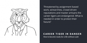 The careers tigers are in danger - Velites insights in implementation, interaction and leadership